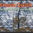 Chromatische aberratie verwijderen | Lightroom Quick Tip