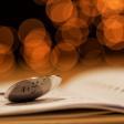 Basiscursus: Diafragma voor beginners
