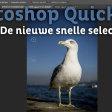 Leer werken met de nieuwe snelle selectietool! | Photoshop Quick Tip