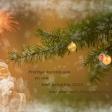 De mooiste kerstkaarten op een rijtje