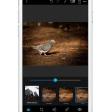 Werken met Photoshop Express: basisbewerkingen op je smartphone