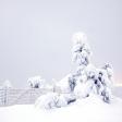 Fotograferen in Lapland