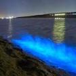 Mysterieuze blauwe gloed in de Noordzee