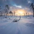 20 fotolocaties voor het fotograferen van de winter in Nederland en België