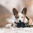 Quiz: wat weet jij van fotograferen in de M-stand?