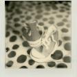 Alternatief fotograferen met Polaroid