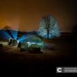 Collectie Licht in het Donker