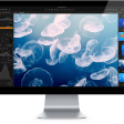 De beste alternatieven voor Lightroom - Capture One, Skylum en meer!