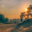 De 5 mooiste natuurgebieden in Nederland om te bezoeken!