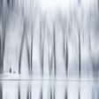 Uitslag fotowedstrijd Winter