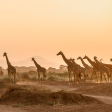 De populairste fotografie bestemmingen van 2019