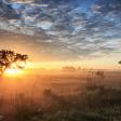 10 rustige natuurgebieden in Nederland
