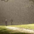 Fotograferen in de regen - zo bescherm je je camera het beste!