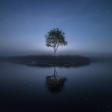 En de winnaar van de fotowedstrijd 'Puur Natuur' is...