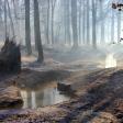 Uitslag fotowedstrijd Onontdekt Nederland