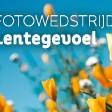 Fotowedstrijd: Lente - Win een Tamron objectief