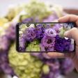 Win een Zenfone 5 - Volg nu de drie delen van de Cursus Smartphonefotografie