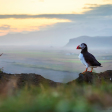 Oproep: wat is jouw favoriete fotolocatie in IJsland?