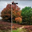 Handige gratis apps en software om foto's te  bewerken!