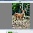 8x gratis software voor fotobewerking