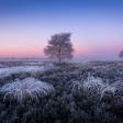 De beste tips voor winterfotografie