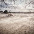 Workshop landschapsfotografie met de Panasonic Lumix G9