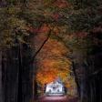 Zo versterk je de herfstkleuren van een foto in Lightroom