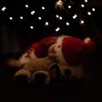 7 Tips voor de mooiste kerstkaarten