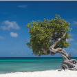 7 tips om je vakantiefoto's te ordenen