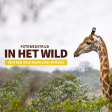 Uitslag Fotowedstrijd In het wild