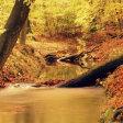 14 van de mooiste herfstlocaties om te fotograferen