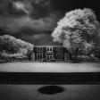 Creatieve fotografie: zo ga je aan de slag met infraroodfoto's