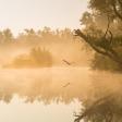 Expertuitdaging: Wildlife als onderdeel van je landschap
