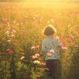 Redactiekeuze: Field of dreams