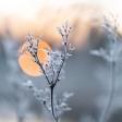 De beste tips voor het maken van winterse plaatjes!