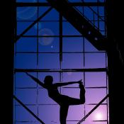 Quickstart: Een silhoueteffect creëren in Photoshop Elements  © quickstart, silhouet, na
