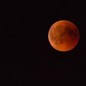 7 tips voor het fotograferen van de (bloed)maan © jp-pictures
