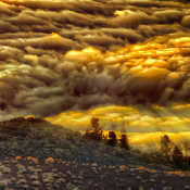 Zo fotografeer je bij bewolkt weer © egonzitter