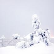 Fotograferen in Lapland © Edo-Jan Meijer