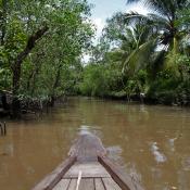 Fotograferen in de tropen © blog, tropen, bescherming, condens