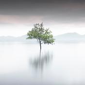Expertuitdaging: minimalisme gebruiken voor je landschapsfoto's © minimalisme, kleur, landschap