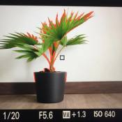 Handige camerafuncties die vaak vergeten worden © peaking, color, red