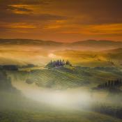 Mist gebruiken voor mysterieuze landschapsfoto's  © mist, licht, kleur, nevel