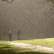 Fotograferen in de regen - zo bescherm je je camera het beste! © regen, bui, weer