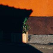 Dynamisch bereik: het maximaal haalbare van een camera © IDG NL