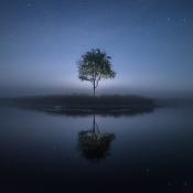 En de winnaar van de fotowedstrijd 'Puur Natuur' is... © artikel, fotowedstrijd, dreetje