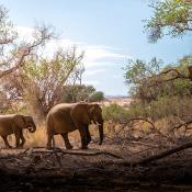 Highlights van Namibië - Met de LUMIX G9 © IDG NL