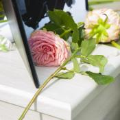 Tips voor Uitvaartfotografie - Het fotograferen van de laatste reis © uitvaart, rozen, fotografie