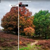 Handige gratis apps en software om foto's te  bewerken! © photolemur, gratis, software, screenshot