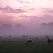 9 fotogenieke locaties in Gelderland © IDG NL